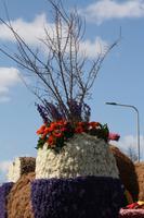 66. Blumenkorso