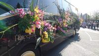 Selbst die Busse des Blumenkorsos 2018 sind geschlückt