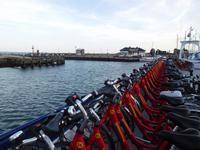 Texel – Hafen