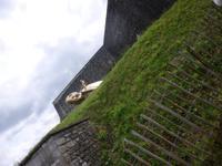Namur, Zitadelle, Schildkrötenreiter