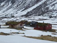 Grasbedeckte Häuser