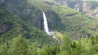 Flam - Fahrt mit der Flambahn - Wasserfall im Flamtal