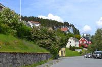 Trondheim (5)