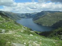 Blick auf Röldal am Röldalfjord