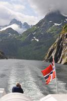 Seeadlersafari im Raftsund - Trollfjord