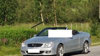 In der zentralen Bildmitte steht ein Elch! (Der Mercedesfahrer und seine Frau ist nicht gemeint!) - An der E6 in Lakselv