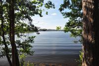 An den Ufern des Pyhäjänne im gleichnamigen Nationalpark (Im Herzen der finnsichen Seenplatte)