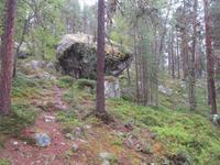 Findlinge bei der Bärenhöhle