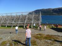 060 Norwegen, Porsanger, Stockfischgestelle