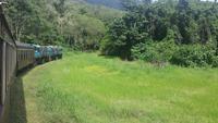 Fahrt nach Kuranda