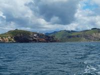 Dunedin - Schifffahrt mit der Monarch