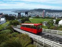 Wellington - Freizeit