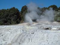 Rotorua - Te Puia Thermalpark
