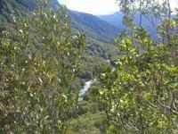 ...Flusslandschaft