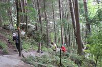 Steiler Aufstieg bei der Wanderung zum Bob's Peak