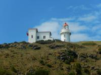 Dunedin - Otago Halbinsel - Rundeise Neuseeland - Südinsel