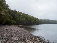 Kepler Track, Lake Te Anau