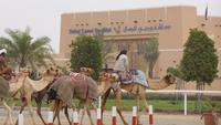 Dubai - Kamelrennstrecke