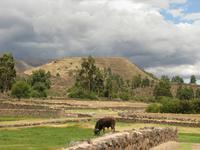 Viracocha-Tempel in Raqchi