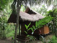 Unsere Hütten im Regenwald