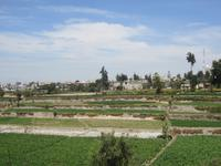 Terrassen bei Arequipa