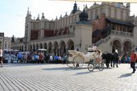 Rynek von Krakau
