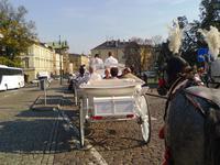 mit der Kutsche nach Kazimierz