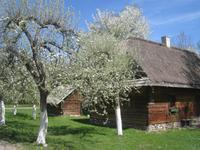 Frühling im Bauernmuseum Oppeln