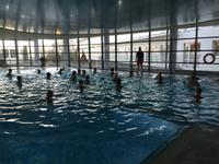Wassergymnastik im Hotel Ikar Plaza