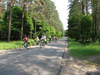 Eberhardt-Radreisegruppe fährt durch die Johannisburger Heide