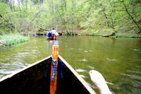 Stakenbootfahrt auf der Krutinia