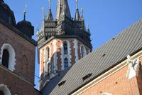 Der Turmbläser auf der Marienkirche