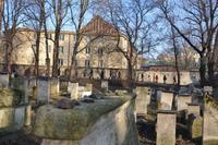 Andächtiger Rundgang auf dem jüdischen Friedhof