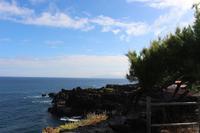 Blick über die Nordküste von Pico