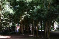 Park Ponta Delgada
