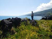 Ganztagesausflug zur Azoren-Insel Pico (15)