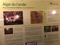 Algar do Carvao