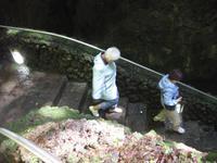 Abstieg in die Höhle Algar do Carvao
