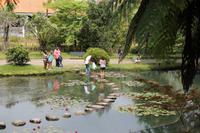 Sao Miguel: Furnas - Park Terra Nostra