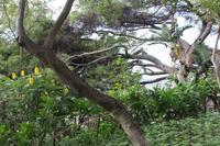 Botanischer Garten_27