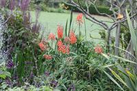 Garten der Familie Blandy_30
