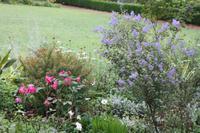 Garten der Familie Blandy_31