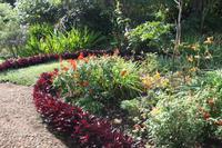 Garten der Familie Blandy_50