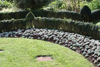 Garten der Familie Blandy_59