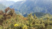 Blick vom Encumeada-Pass
