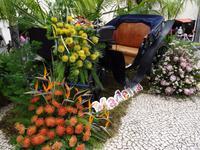 Funchal am Vortag des Festumzuges