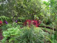 Quinta do Palheiro = Blandy's Garten