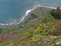 Cabo Girao - Blick 585 Meter hinab auf das Meer