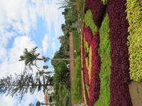 91-Botanischer Garten von Funchal2