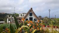 Santana - traditionelle strohgedeckte Häuser...